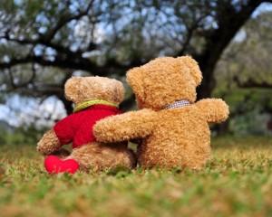 TeddyBearsHeart v1